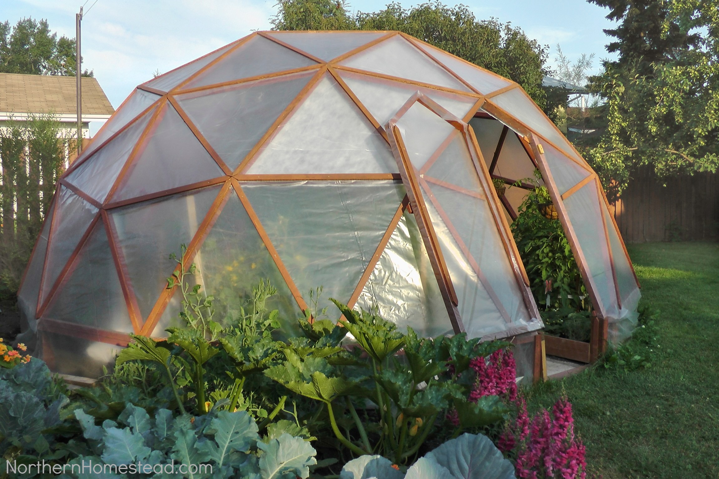 Top Greenhouse Designs And Costs - Backyard greenhouse ideas