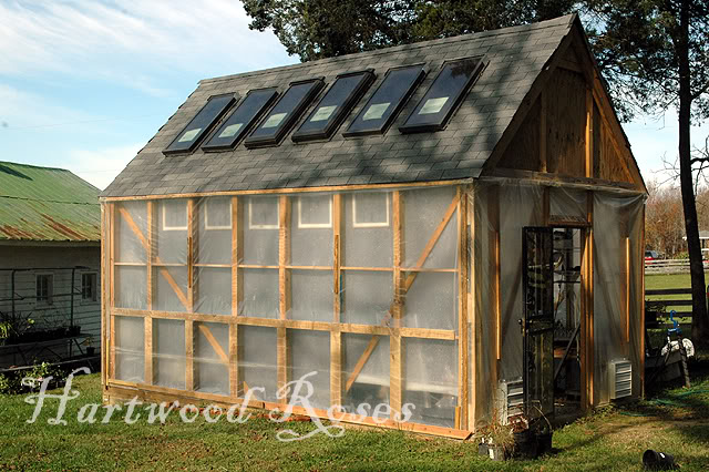 Tall gable roof greenhouse