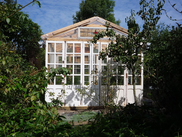 White Greenhouse Part 87