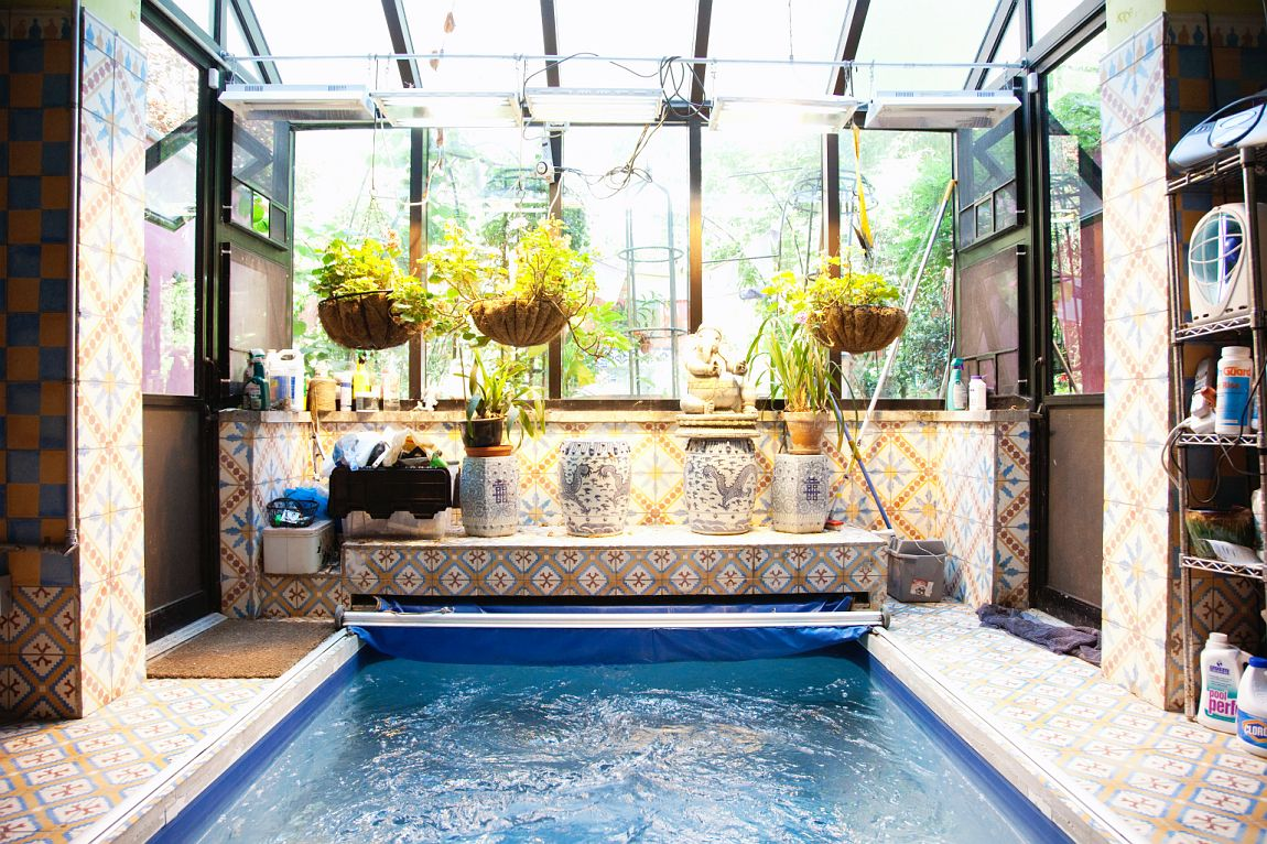 Top 15 sunroom design ideas diy cozy sunrooms plus for Swimming pool room decor